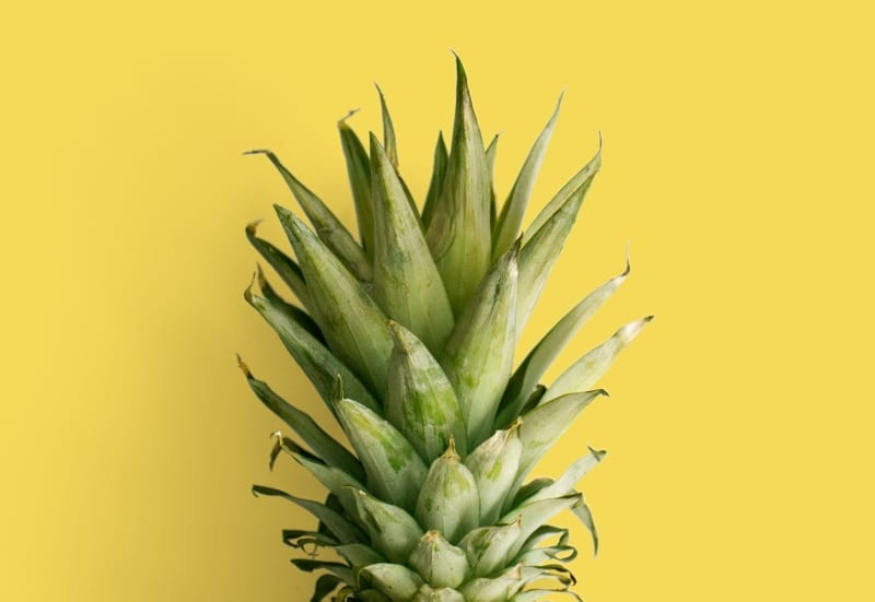 pineapple with yellow background